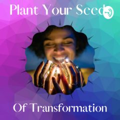 Plant Your Seeds of Transformation